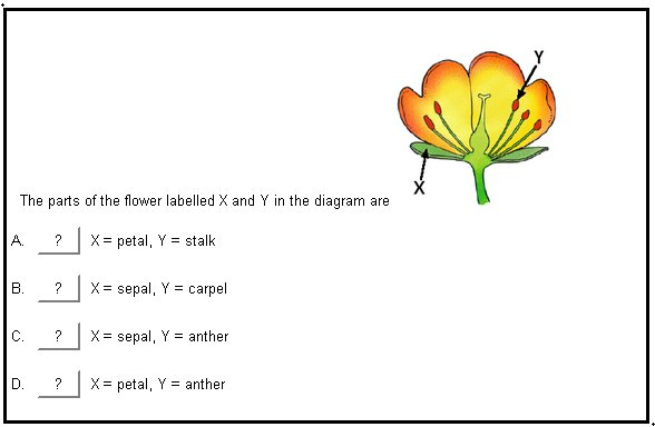 Sexual reproduction in flowering plants quiz